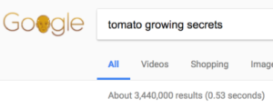 trying to rank for tomato keywords